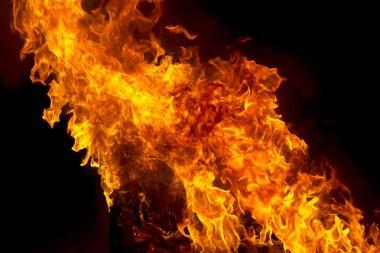 """Картина, постер, плакат, фотообои """"red fire flame on black background"""", артикул 99937766"""