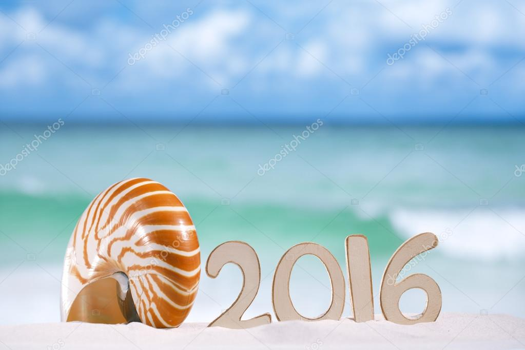 2016 numbers letters with seashell