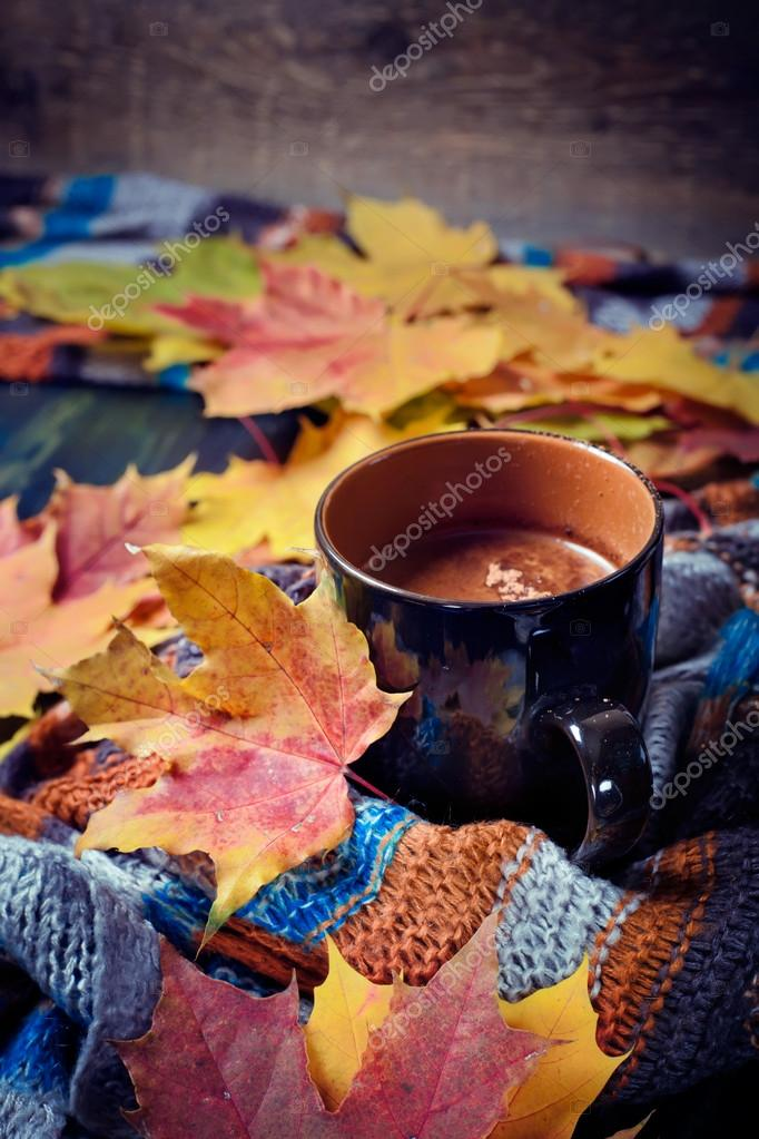 f92e1ad6be8 Cup of coffee set with autumn leaves and a warm scarf — Stock Photo ...