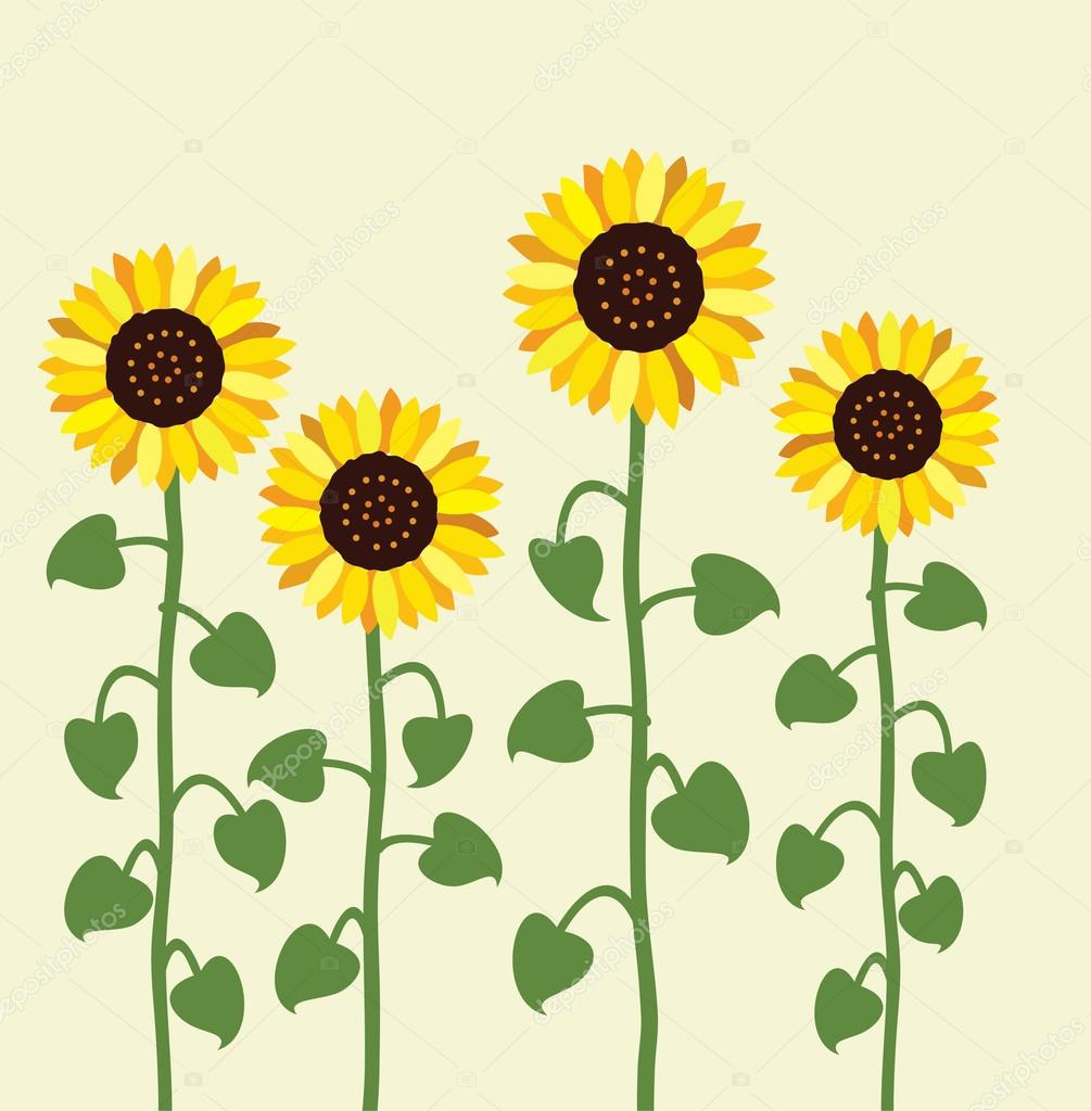 vector sunflower summer background