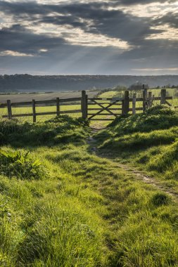 Beautiful English countryside landscape over fields at sunset