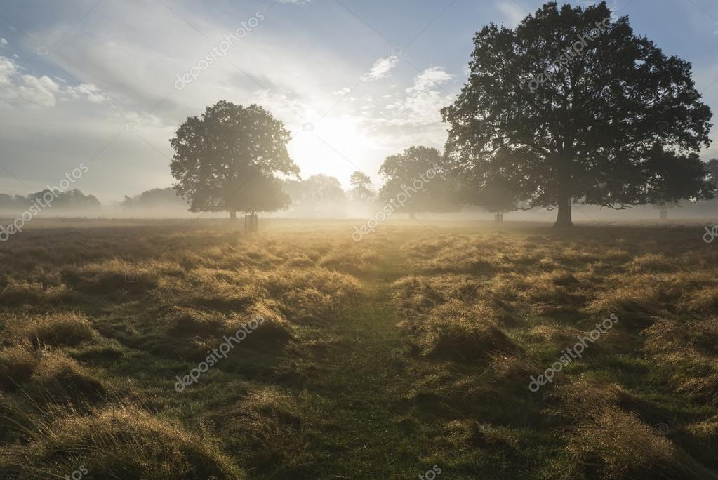 Beautiful Autumn dawn countryside landscape