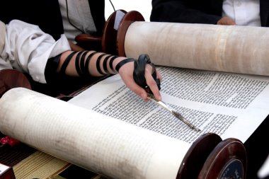 Reading the Torah