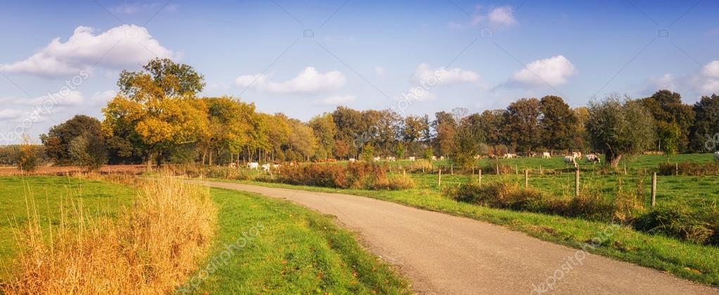 Autumn landscape netherlands