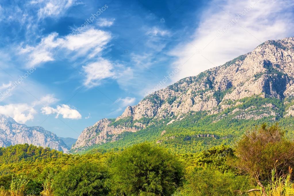 Beautiful Mountain Forest Landscape Stock Photo C Preto Perola