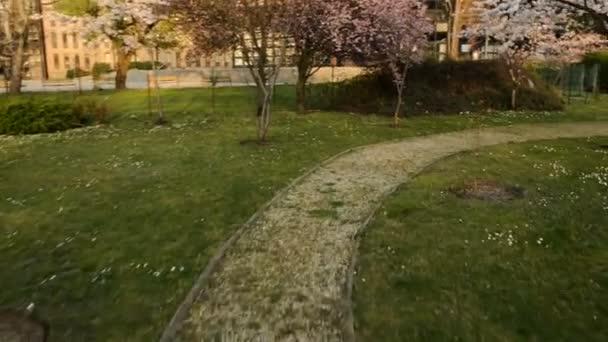 Pěší cesta v parku s glidecam