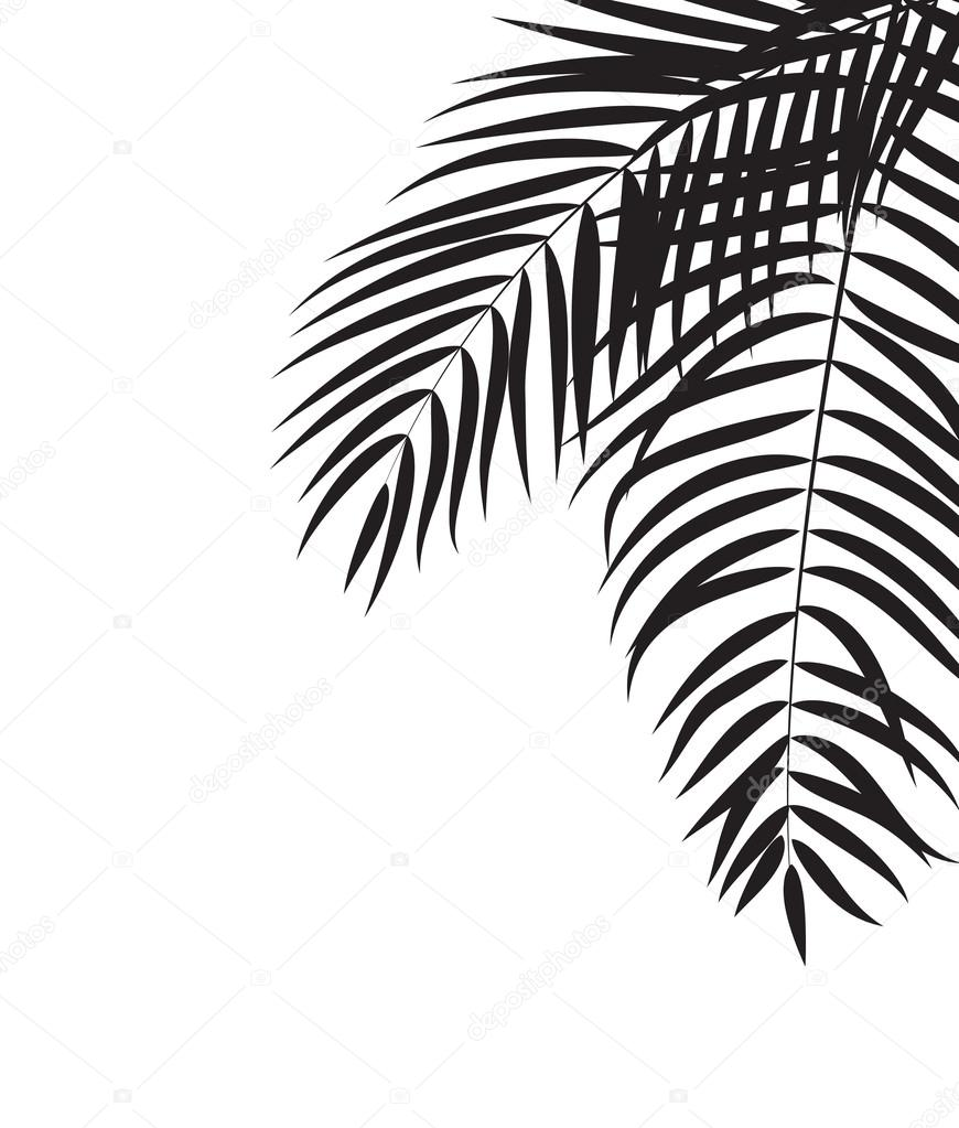 Beautifil Palm Tree Leaf Silhouette Background Vector Illustrat Stock Vector C Yganko 120061722