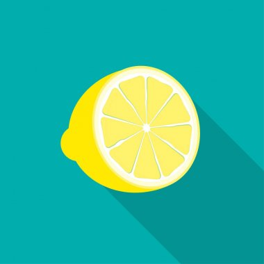 Lemon Icon with Long Shadow. Vector Illustration EPS10 icon