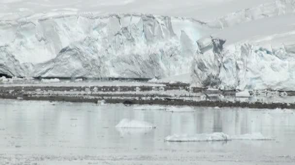 Küste der Antarktis - globale Erwärmung - Eisformationen