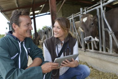 Veterinarian with breeder using tablet