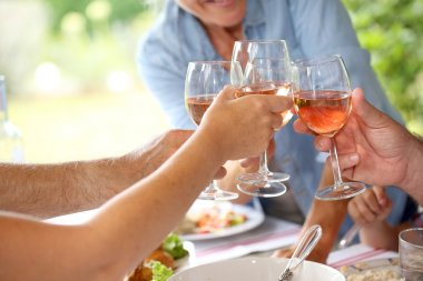 Wine glasses held by family at lunch