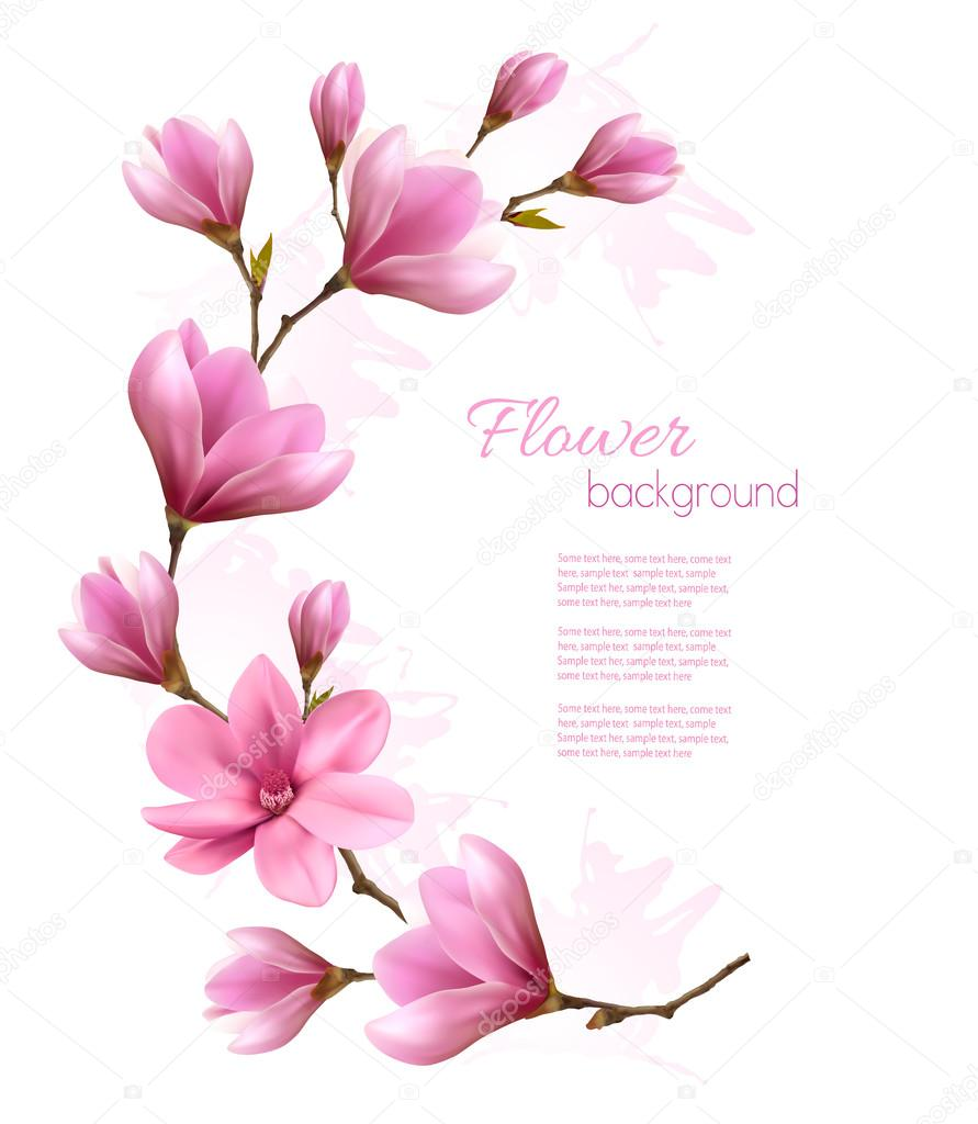 Nature background with blossom brunch of pink flowers. Vector