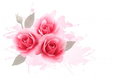Holiday gift cardl with three pink roses. Vector.