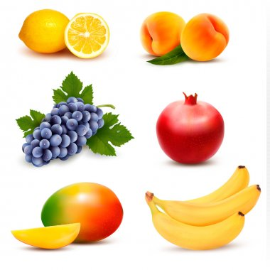 Big group of different fruit. Vector. clip art vector
