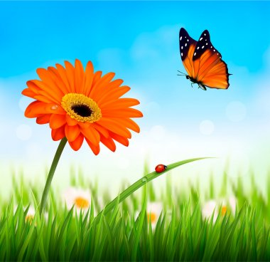 Spring background. Orange beautiful flower and a butterfly. Vect