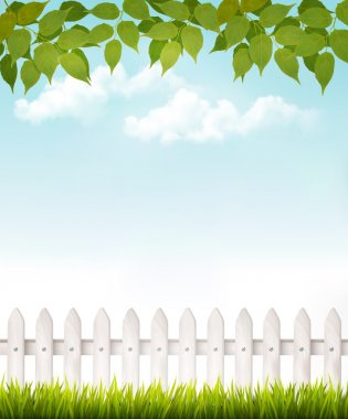 Nature background with green leaves and white french. Vector.