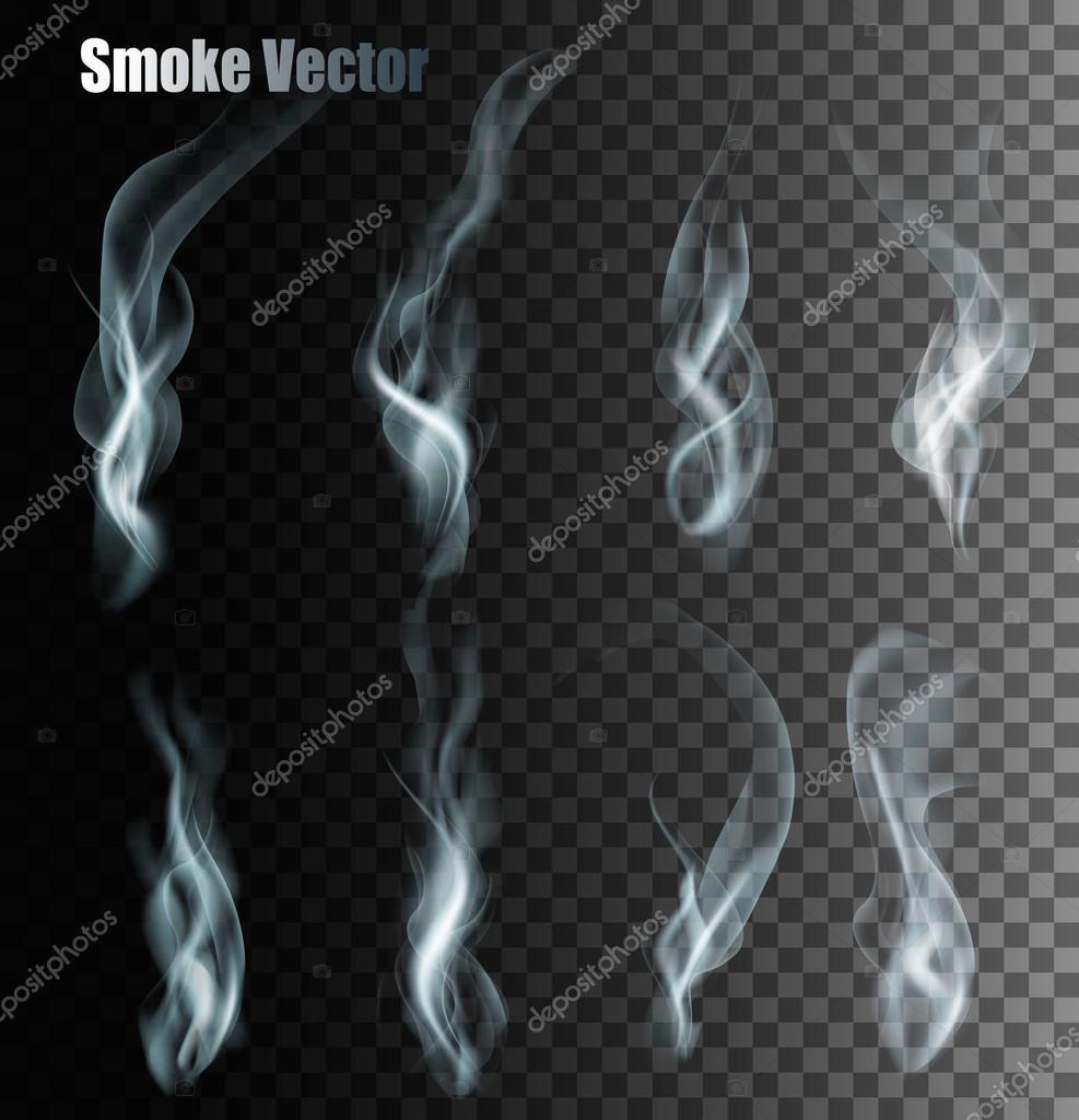 Set Of Transparent Different Smoke Vectors.