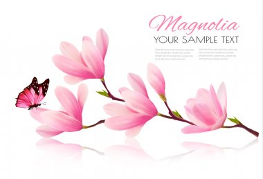 Flower background with blossom branch of pink magnolia and butte