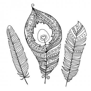 Collection of abstract peacock feathers