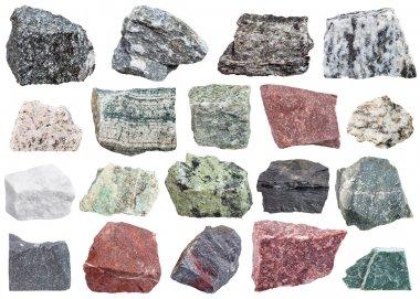 collection of metamorphic rock specimens