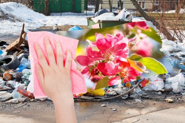 hand deletes urban dumpsters by pink cloth