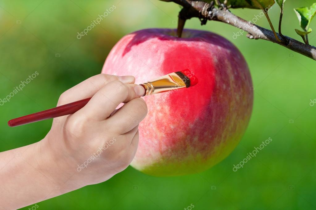 paintbrush paints red ripe apple in garden