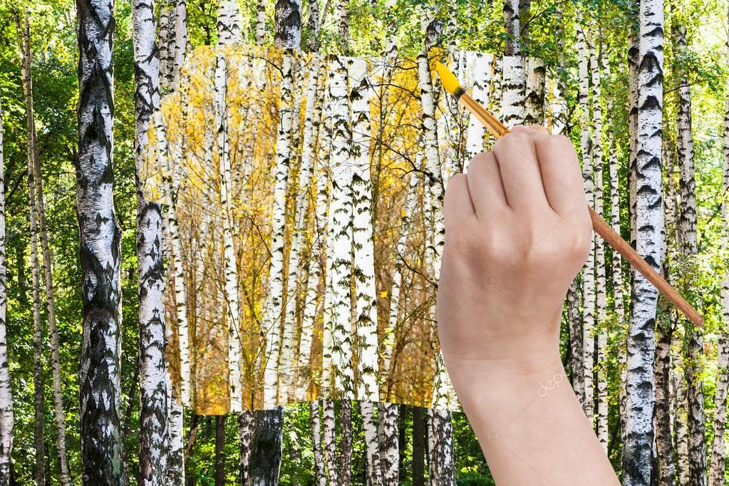 paintbrush paints yellow autumn birch grove