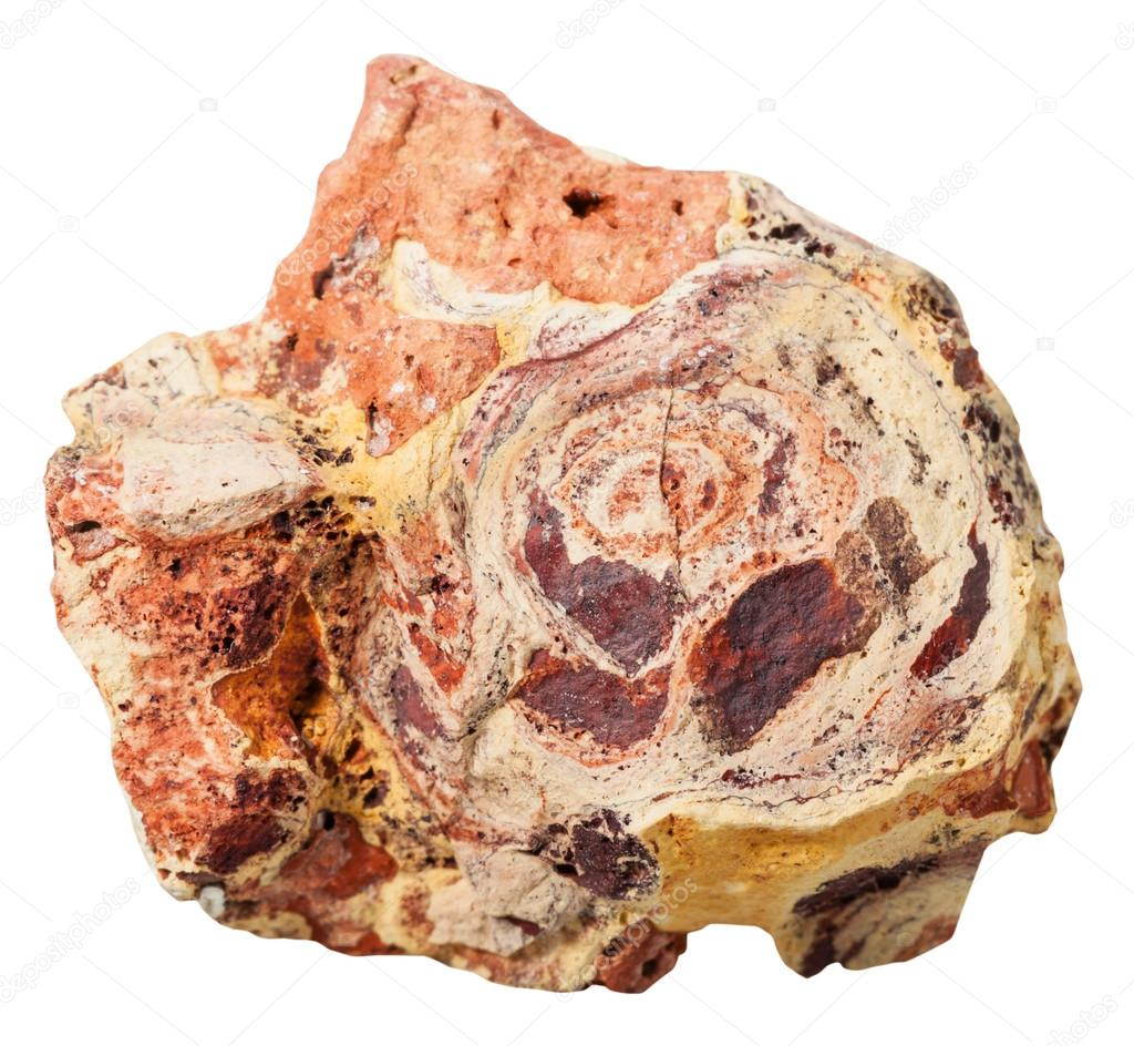 bauxite chatrooms Tos nedir, tos ne demek tos is violated by all fundies witnessing or preaching in chatrooms not silvery ductile metallic element found primarily in bauxite.
