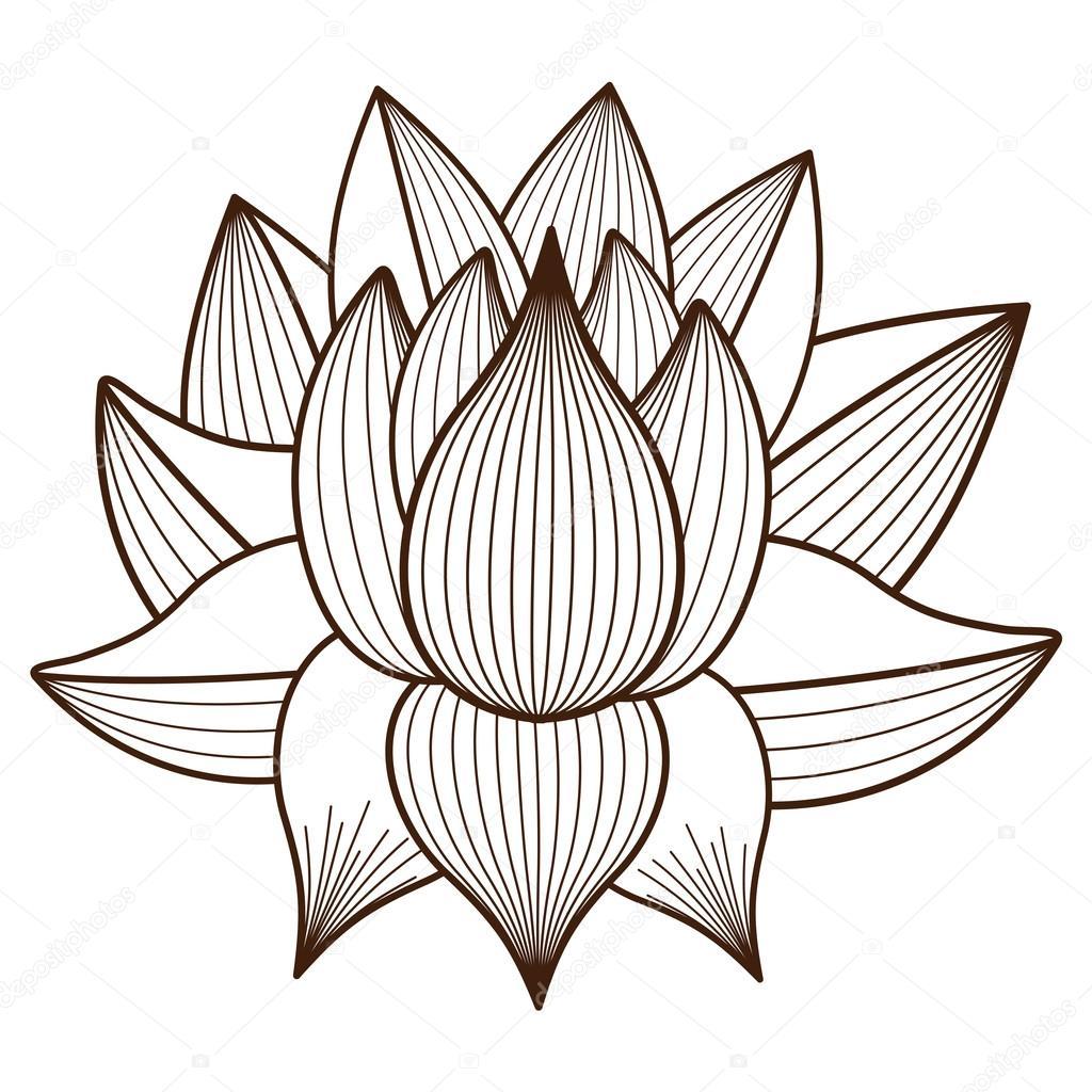 Isolated Lotus Flower Design Stock Vector Grgroupstock 123669562