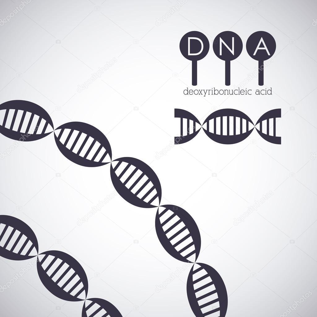 Diseño De Cromosoma De Estructura De Adn Vector De Stock