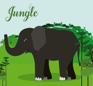 Jungle design