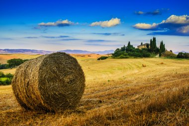 Tuscany landscape hills and meadow, San Quirico di Orcia, Tuscany