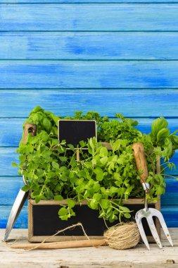 "Картина, постер, плакат, фотообои ""травы и садовые инструменты постеры картины фото"", артикул 70371175"