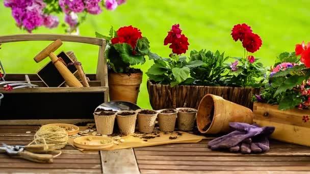Zahradnictví, nástroje, květináče a rostliny na zahradě stůl