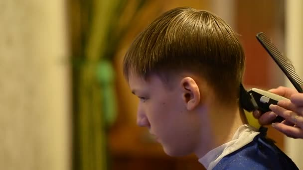 Hand Trimming Boys Hair