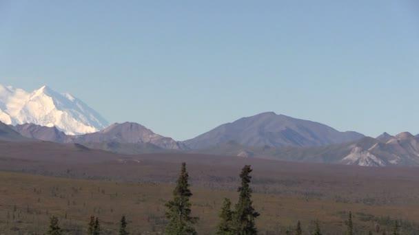 Denali National Park Landscape