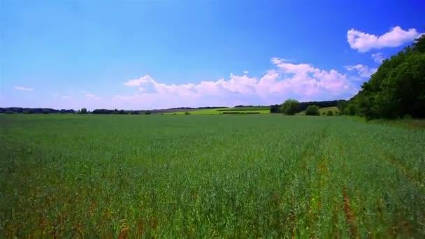 Táj a zöld mezőt és a felhők. Mozgás
