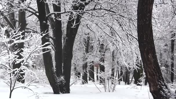 Winterwald mit Silhouetten wandelnder Menschen