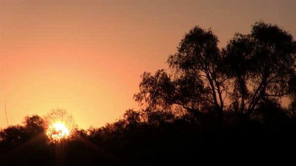 Krásný východ slunce v dřeva a červená obloha. Časová prodleva