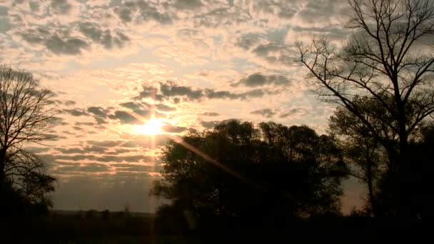 Beautiful   cloudy sunset  with sunbeams  in  wood. Time lapse