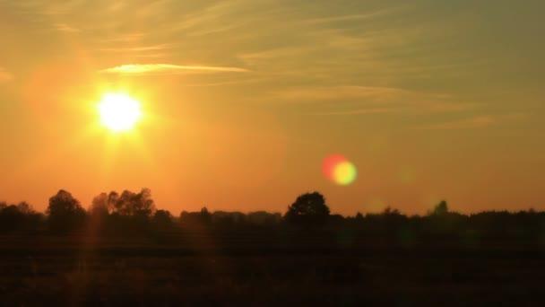 Sonnenuntergang und Bäume. Zeitraffer in roten Tönen