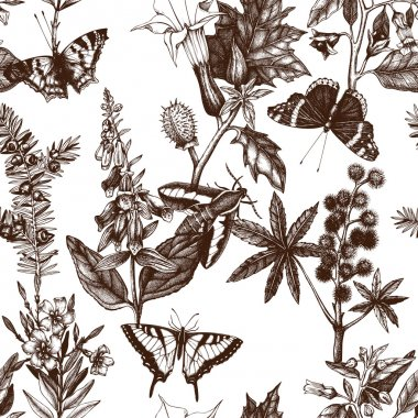 Pattern with poisonous flowers and butterflies
