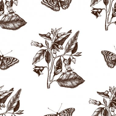 Pattern with Poligonia butterflies and Belladonna flowers