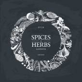 Fotografie hand drawn spices and herbs
