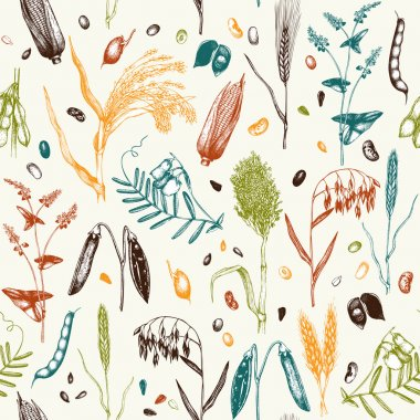 seamless pattern with agricultural plants