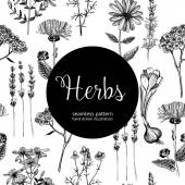 Fotografie Seamless vintage herbal background