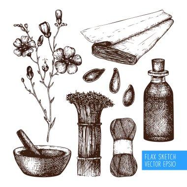 Vintage flax sketch