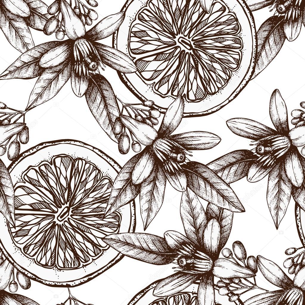 Vintage citrus background