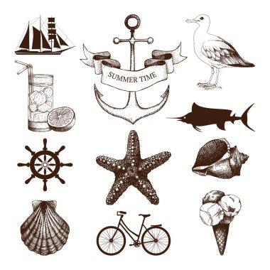 set of decorative sea elements