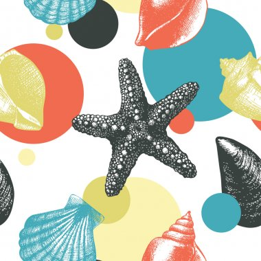 hand drawn sea shells sketch and star